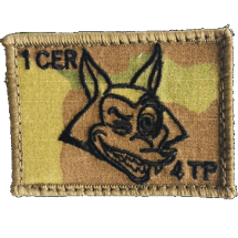 1 CER 4 Troop badge